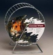 NOT Recommended for Degus!