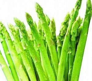 Can Dogs Eat Asparagus?