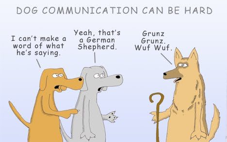 Big Dog Communications