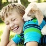 Five All-Natural Ways To Get Rid Of Fleas