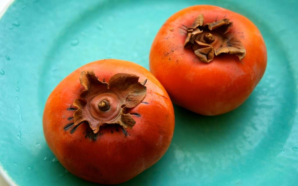 Can Dogs Eat Persimmons?