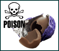 Chocolate Poisoning (Canine)