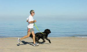 Running with your dog: Best jogging partner ever