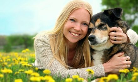 Pet Adoption – Advice From A Vet