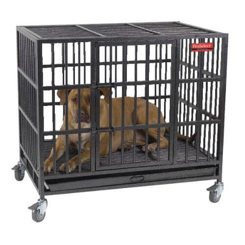 Your Dog Can T Break These Heavy Duty Escape Proof Crates