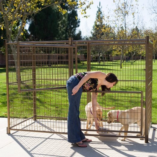 What Every Dog Owner Needs To Know About Outdoor Dog Kennels