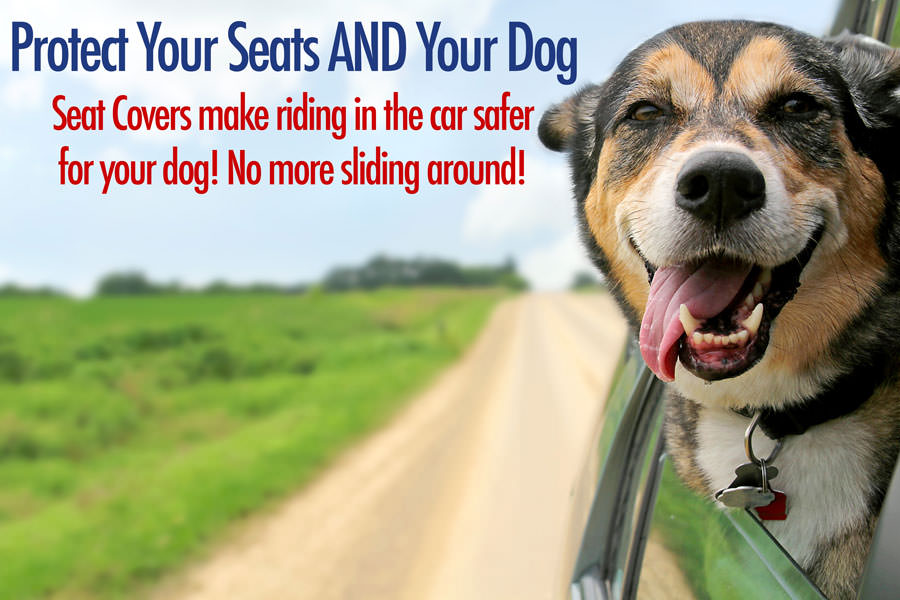 Best Dog Car Seat Covers for 2016