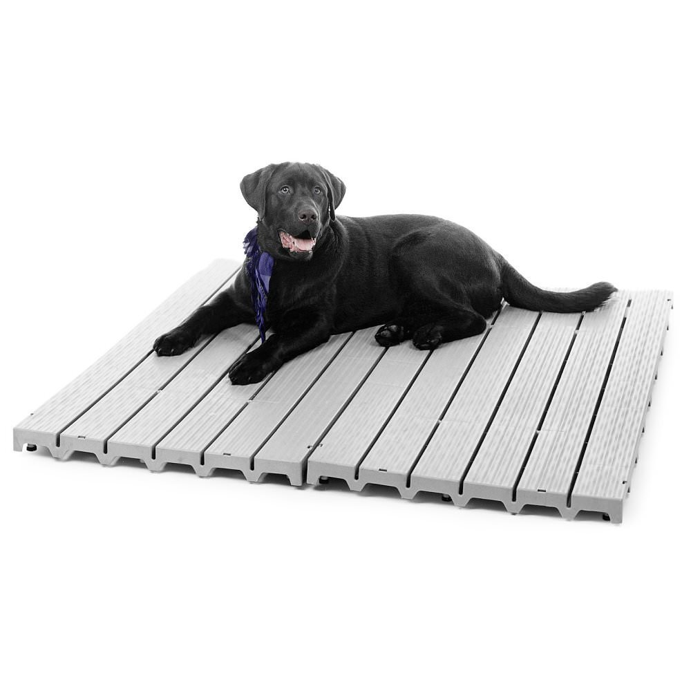 Six Popular Types Of Outdoor Kennel Flooring