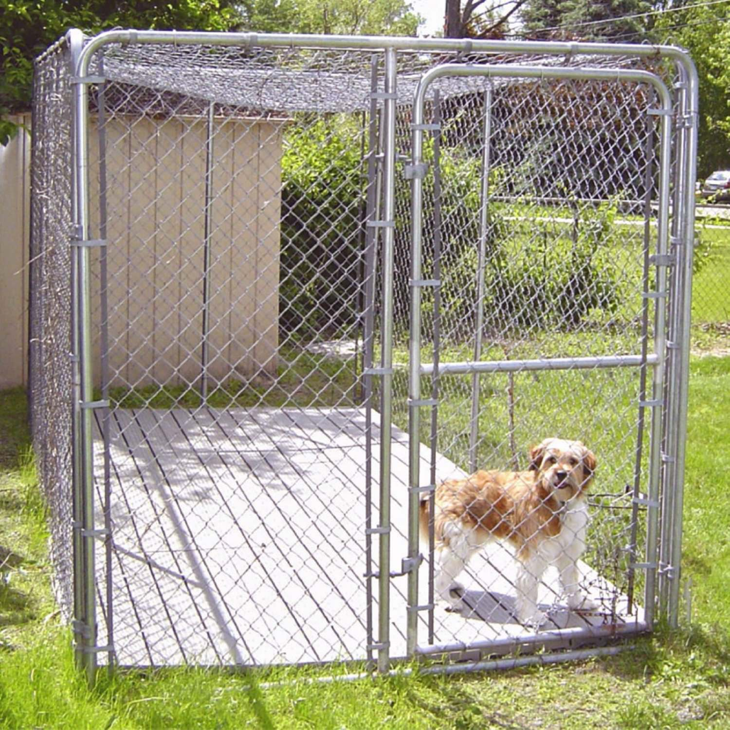 five great types of kennel flooring for dogs | animal hub