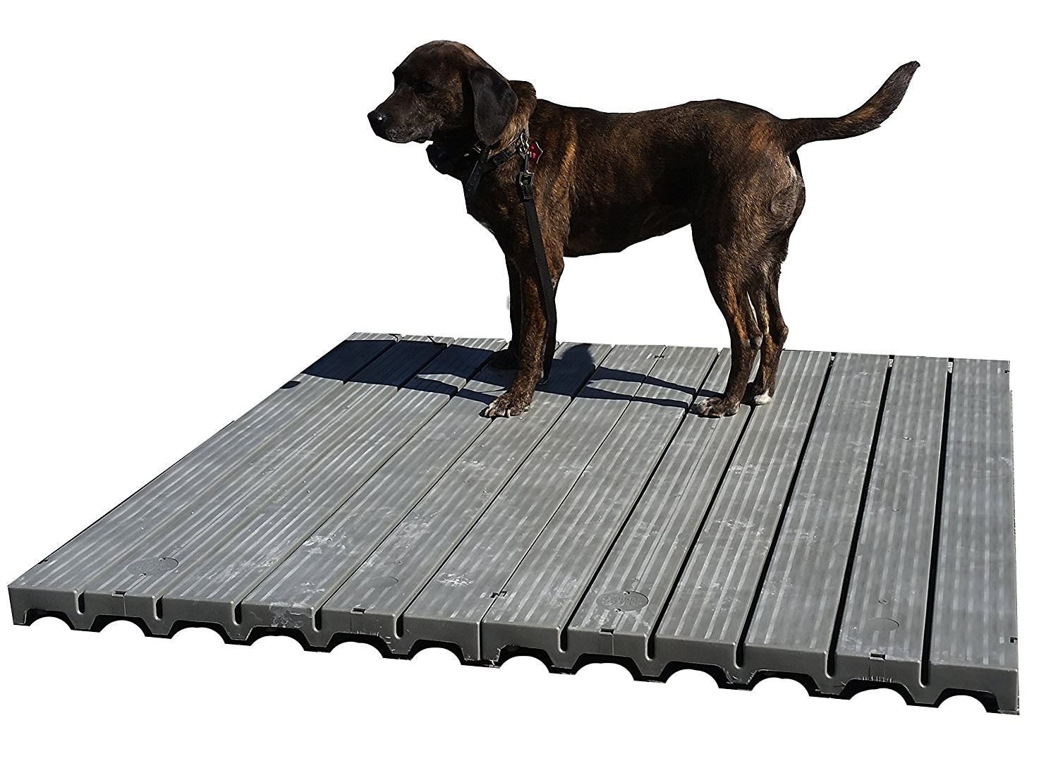 Outdoor dog kennel flooring and platforms flooring designs for What is dog boarding