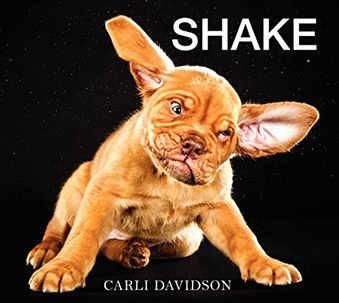 Shake Coffee Table Book