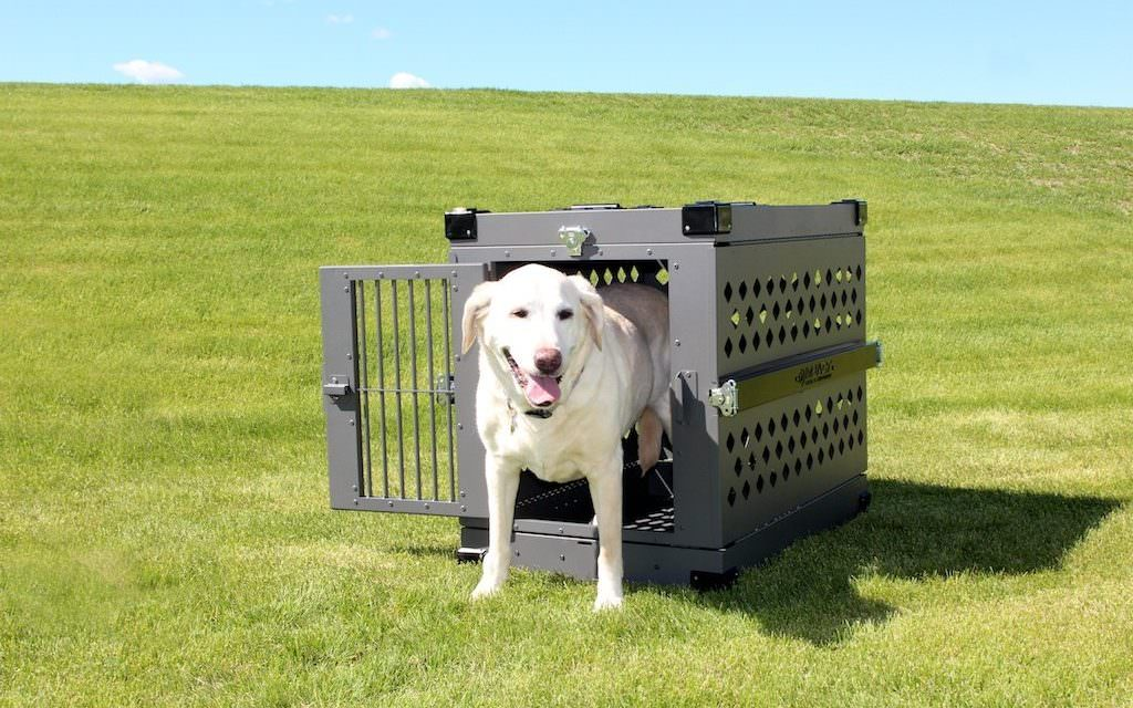 8 great features of the impact case collapsible dog crate - Collapsible Dog Crate