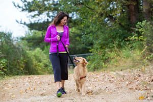Training a Dog to Walk on a Leash